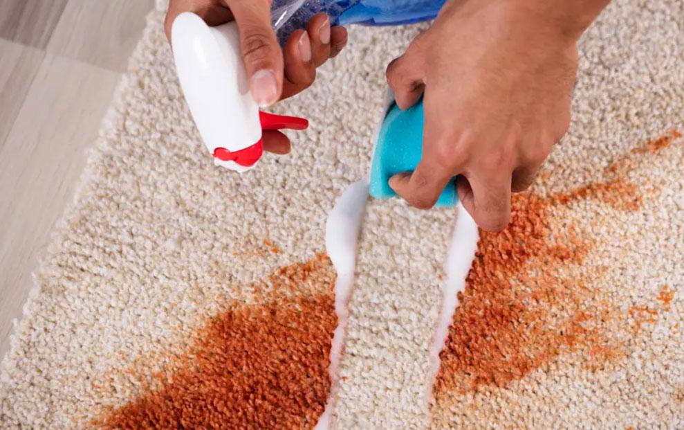 Kako najbolje očistiti tepih? Patak-O zna kako!
